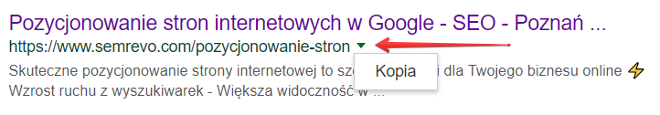 Menu rozwijane w wynikach wyszukiwania