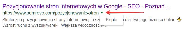 Sprawdzanie kopii strony w Google